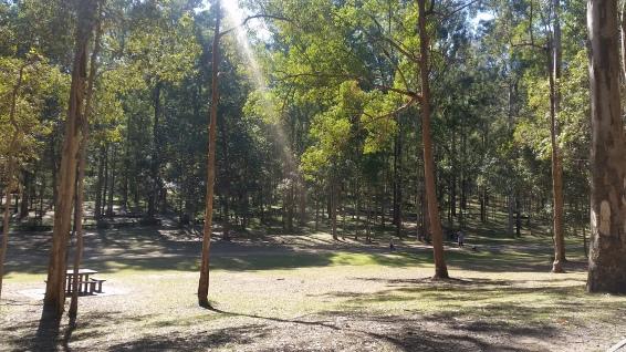 Daisy Hill Conservation Park