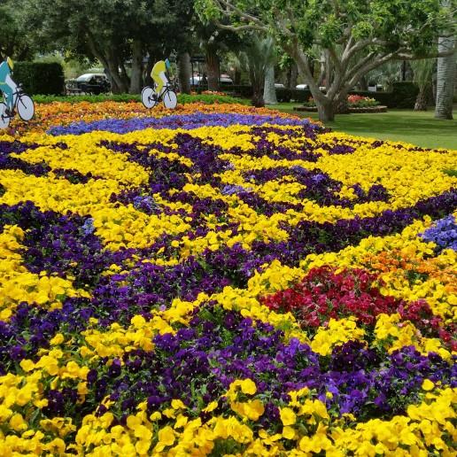 Gardens on Display