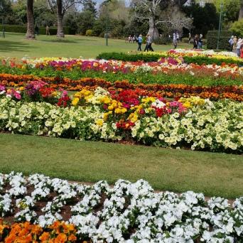 Queens Park Botanical Gardens