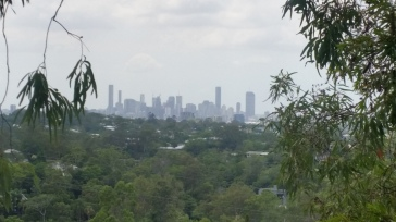 Brisbane City Views