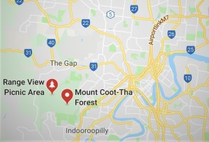 Mt Coot-tha Forest Park