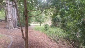 Scenic Walking Trails