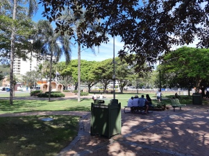 Relax in the Park