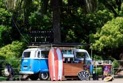 SURF'N SAFARI