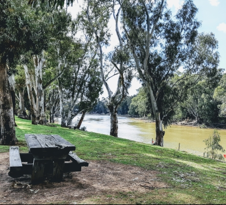 Lunch by the Murray