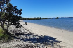 Thompson's Beach