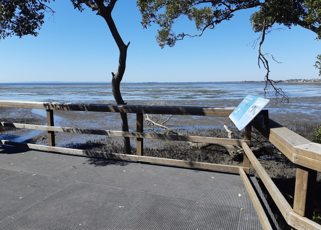 moreton-bay-views