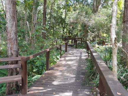 Wetlands Walk (2)