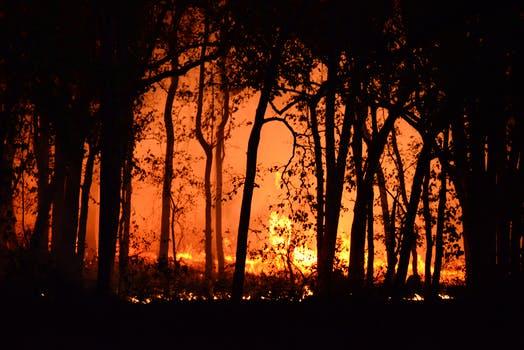 wpress bushfire